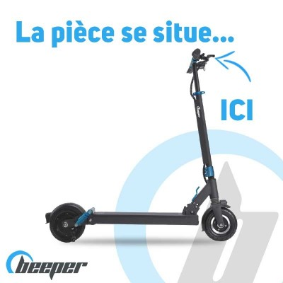 Electric Scooter FX8 •...